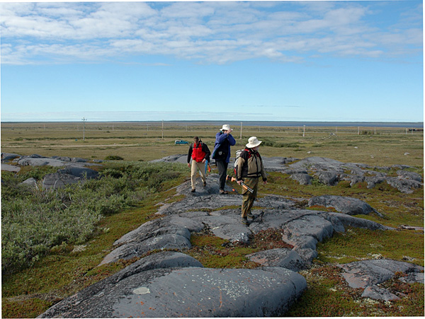 Striding across one of the quartzite ridges that formed islands in the Ordovician sea: L-R are Norm Aime, me, and Ed Dobrzanski (photo © David Rudkin, Royal Ontario Museum)