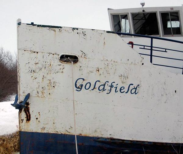 goldfield1