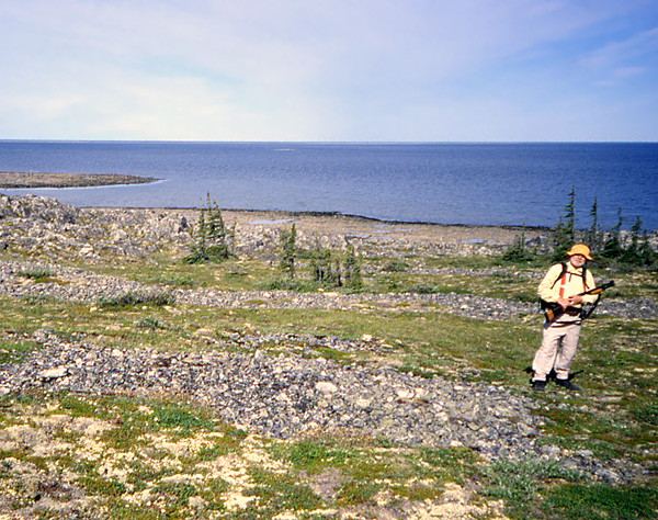 Ed Dobrzanski stands beside ancient beach ridges at Button Bay, Hudson Bay. Beach ridges extend inland from Button Bay, providing abundant and often graphic evidence that the land has steadily rising (and local relative sea level falling) as a result of post-glacial rebound.