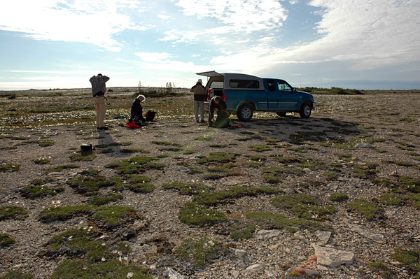 Paleontological field party on a beach ridge east of Churchill, Manitoba (photo David Rudkin, Royal Ontario Museum)