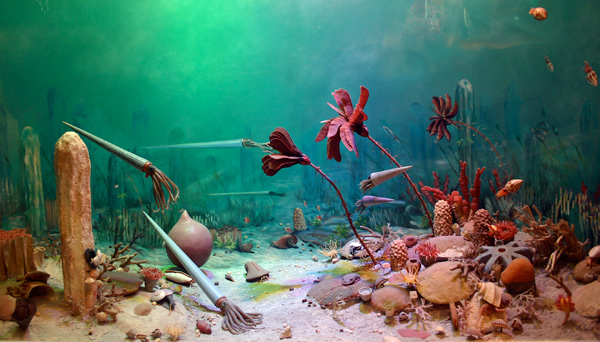 This diorama at the Manitoba Museum depicts an Ordovician seafloor in southern Manitoba