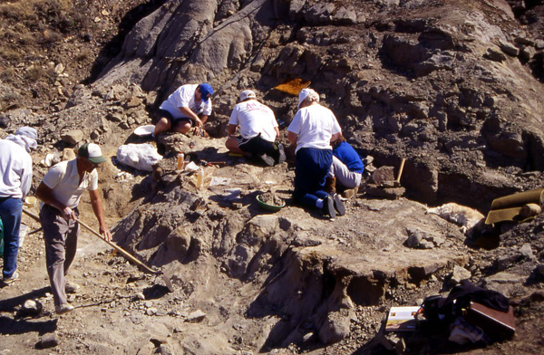 George Lammers (L, holding broom) leads the 1994 dinosaur dig. (photo © The Manitoba Museum)