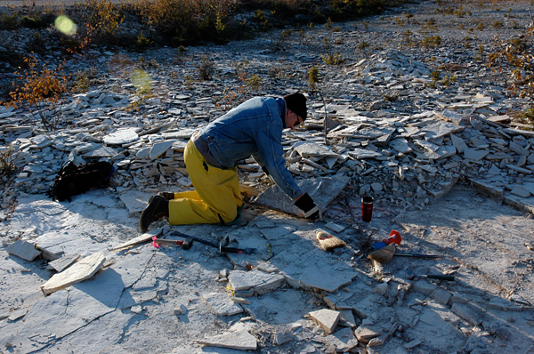 Collecting fossils in -3°C weather required appropriate layering of clothes (note the cup of essential hot coffee).