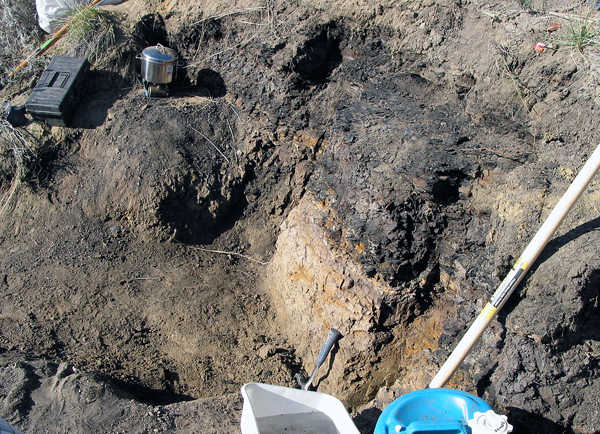 This is the site where we would extract our first sample. The boundary clay sits above the pale Cretaceous Frenchman Formation, and immediately beneath dark coaly shales of the Paleocene Frenchman Formation. (photo The Manitoba Museum)