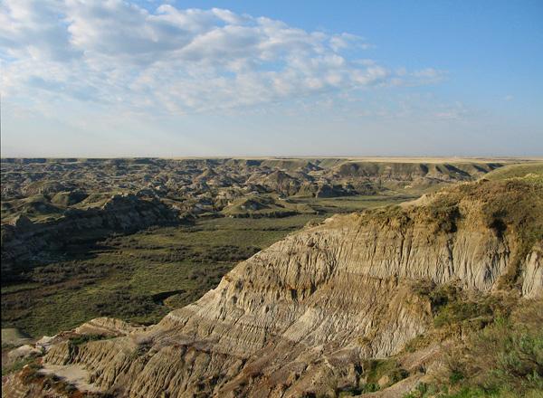 Dinosaur Provincial Park, Alberta, Cretaceous