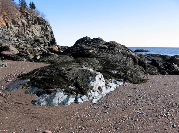Rocky shore at Sheldon Point