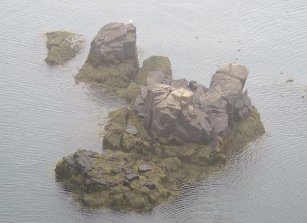 bird islet