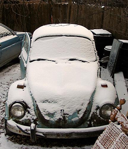 bug_snow