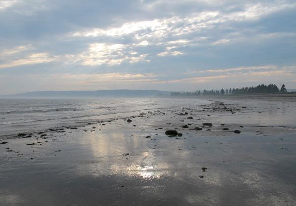 tidal flat 3