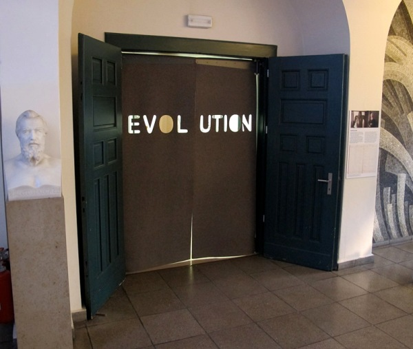 A. Evolution doors