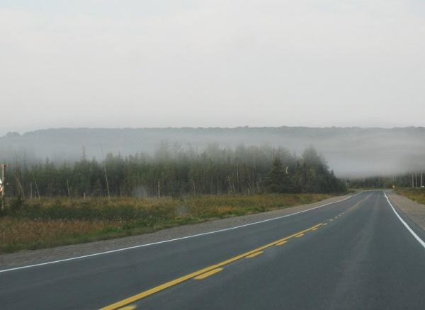 fog_road
