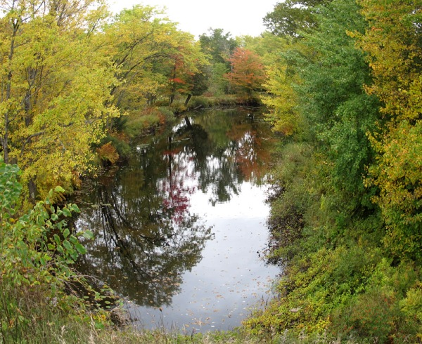 Autumn in south-central Ontario