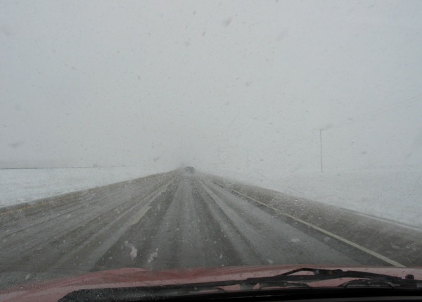 "Snow in May, somewhere near Morse, Saskatchewan (it seems entirely appropriate that ""morse"" is an archaic name for walrus)"