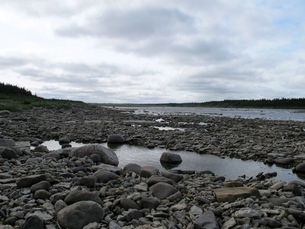 The riverbank near Red Head Rapids