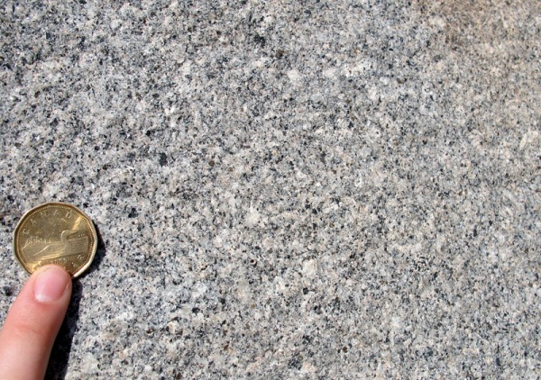 A detail of the Hampstead  Granite (coin diameter is 26.5 mm).