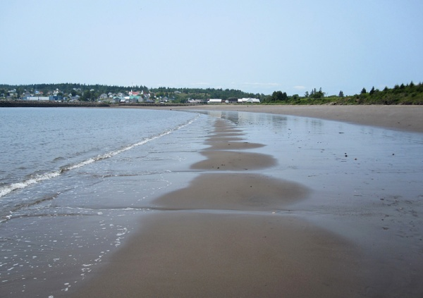 What is the physical process that causes these remarkably regular tidal channels across the beach? I'm sure that there is an M.Sc. thesis here . . .