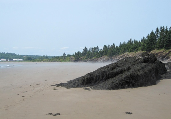 At the far end of the sandy beach, a sloping shelf of bedrock marks the transition . . .