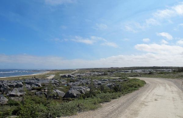 Suburbans are well suited to the gravel roads of the Churchill area. This is the shore road near Churchill.